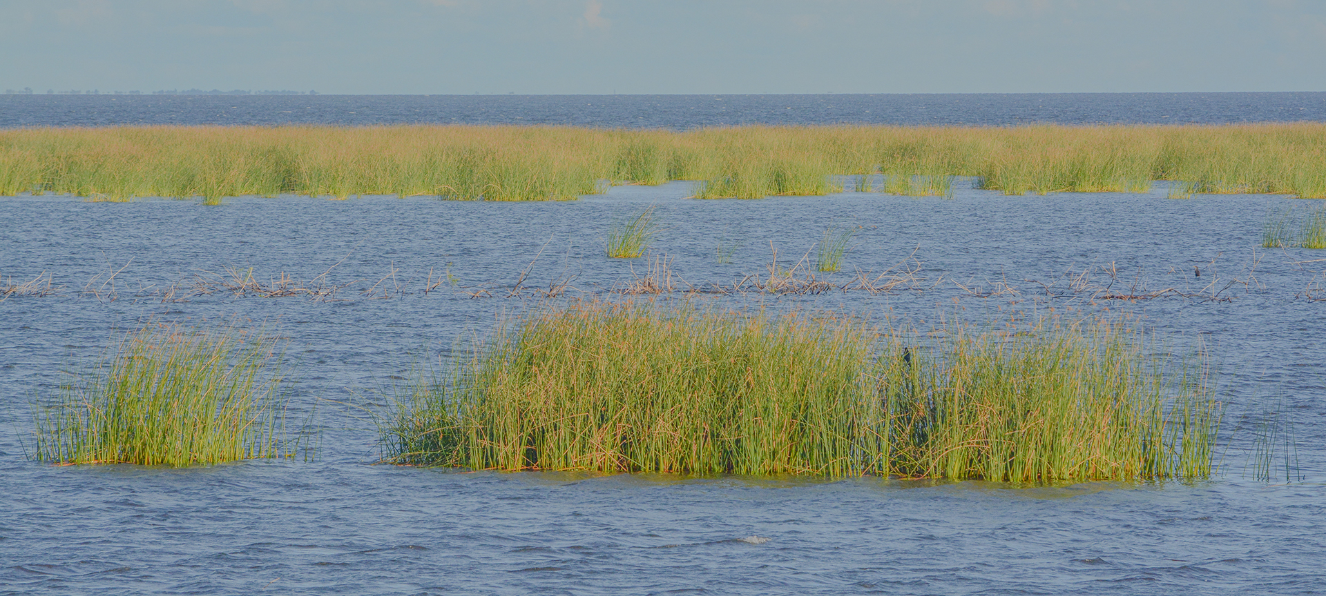 Lake Okeechobee also known as Florida's Inland Sea, is the largest freshwater lake in the state of Florida. Okeechobee covers 1,900 square kilomtres and is exceptionally shallow for a lake of its size, with an average depth of only 2.7 metres. The Kissimmee River, located directly north of Lake Okeechobee, is the lake's primary source.