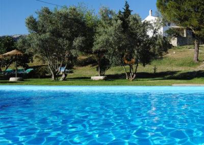 The swimming pool & garden at Casa de la Monja, Villanueva de la Concepción