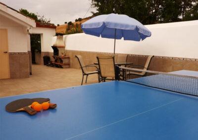 The rear patio & barbecue area at Casa La Palmera, Arroyo Coche