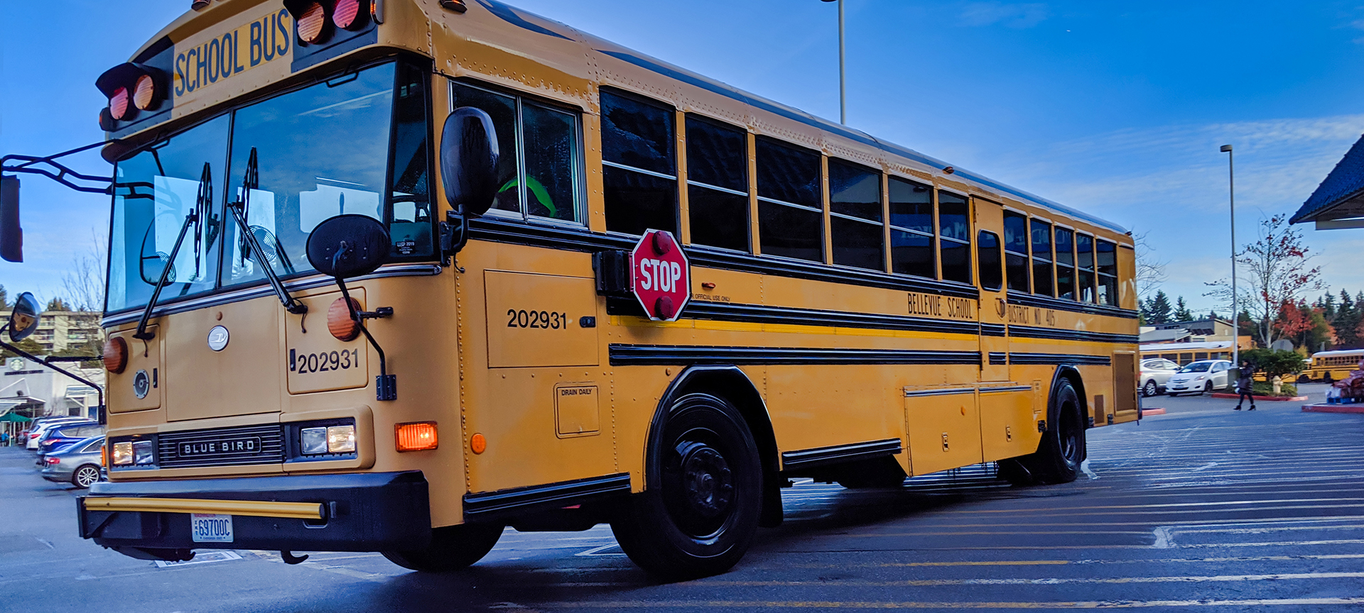 School buses frequently stop at the side of the road to drop children off and when preparing to do so they turn on yellow flashing lights as a warning that they are intending to stop. The lights change to flashing red and a red hexagonal STOP sign flips out from the side of the bus. At this point no vehicle is permitted to pass or go alongside the bus. All traffic must come to a complete standstill while the children alight (and while the sign and flashing red lights are in operation).