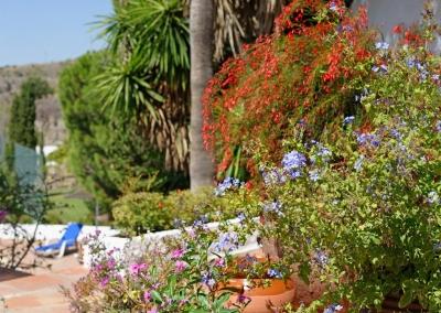 The grounds of Villa Casanova, Nerja are covered in an abundance of lush vegetation