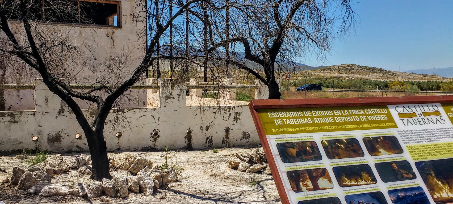 Two of the olive trees burned during the making of Exodus: Gods & Kings. Tabernas was made famous by films including the spaghetti westerns of the 60s and 70s. A Fistful of Dollars, and the Good, Bad and Ugly are just two of the many films made here.