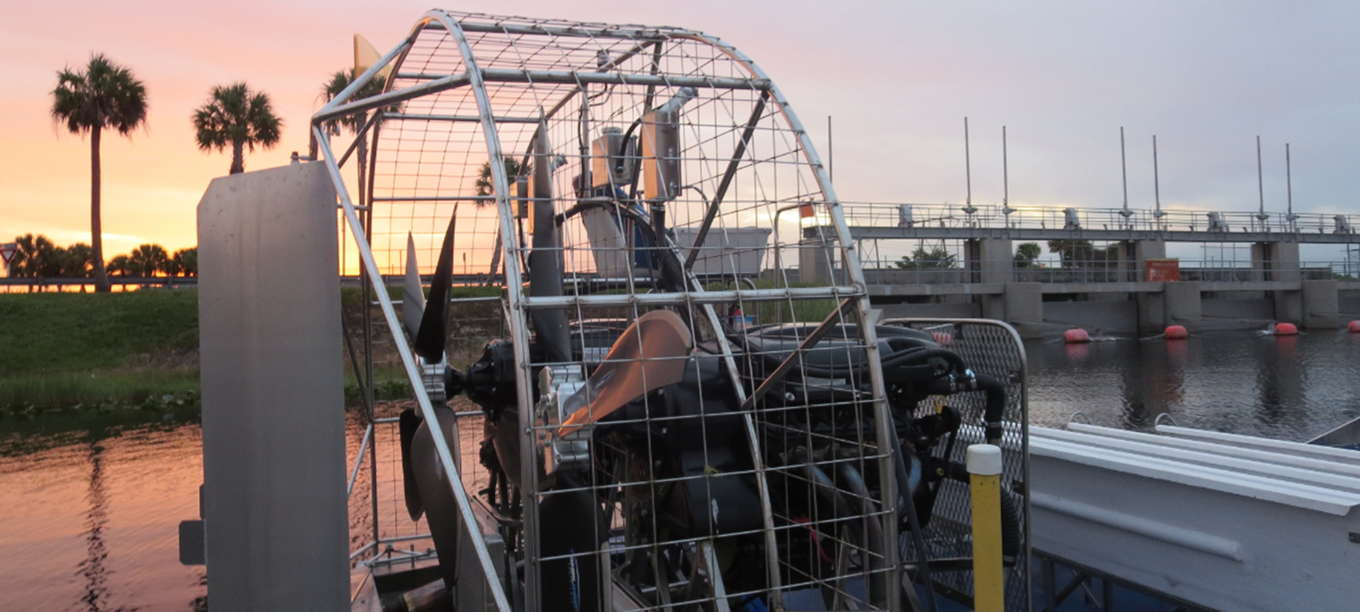 I got to take an airboat ride through the Everglades, looking for alligators and other local wildlife! This was particularly special since the tour started at sunset and came back after dark so you can experience the area in several different ways.
